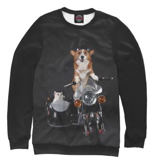 Одежда с принтом Cat and dog