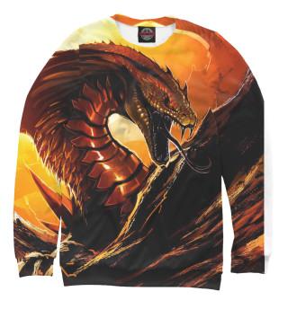 Одежда с принтом Дракон (430342)