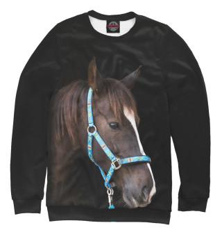 Одежда с принтом Лошадь (581684)