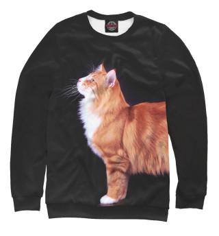 Одежда с принтом Кот подмышкой
