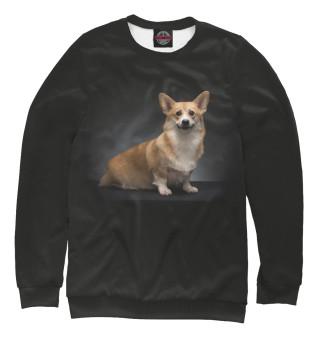 Одежда с принтом Corgi dog