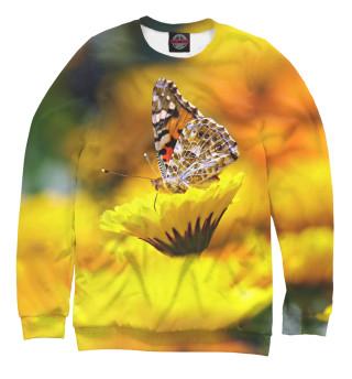 Одежда с принтом Бабочка (357334)