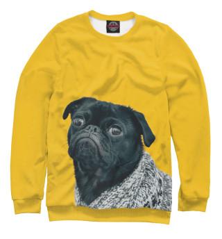Одежда с принтом Собака осуждающе смотрит
