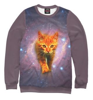 Одежда с принтом Звёздный кот