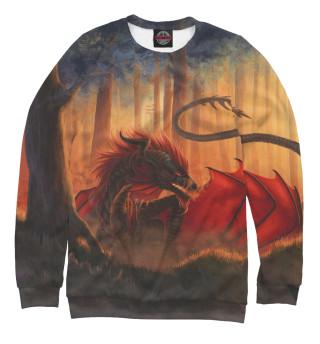 Одежда с принтом Дракон (153844)