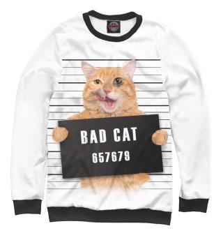 Одежда с принтом Плохой кот