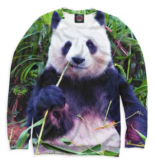 Одежда с принтом Панда