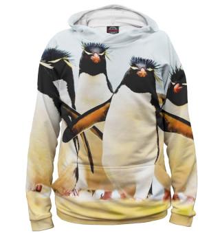 Худи женское Хохлатые пингвины