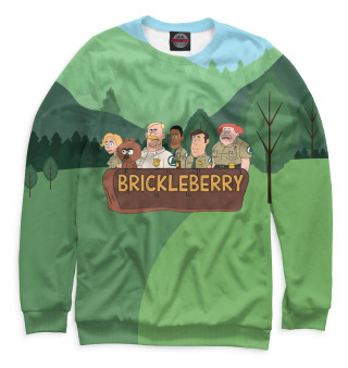 Одежда с принтом Brickleberry (707187)