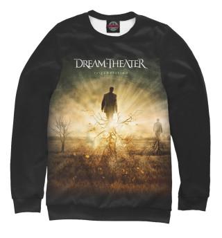 Одежда с принтом Dream Theater (883338)