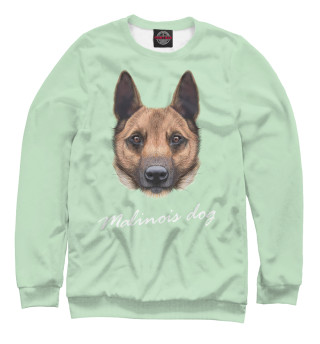 Свитшот  мужской Malinois dog