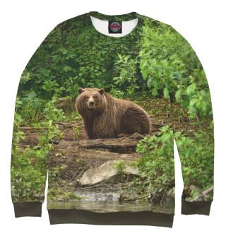 Одежда с принтом Медведь (807652)