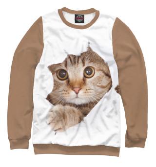 Одежда с принтом Котёнок