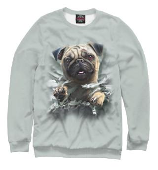 Одежда с принтом Собака (558827)