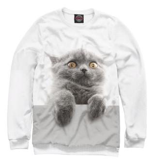 Одежда с принтом Испуганный кот