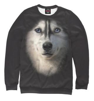 Одежда с принтом Собака