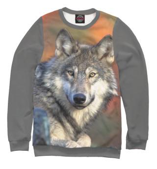 Одежда с принтом Добрый Волк