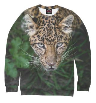 Одежда с принтом Леопард (148610)